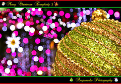Merry Christmas Everybody :) /  2010 (AmpamukA) Tags: christmas color art festival star colorful graphic bokeh everybody ornament merry paragon      ampamuka