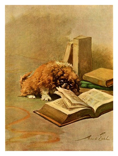 020-Cachorro de pekines-The power of the dog 1910- Maud Earl