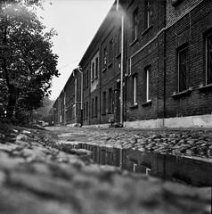 in the mirror (rygielski.piotr) Tags: 120 6x6 lubitel lodz mlyn rolleiretro ksiezymlyn ksiezy