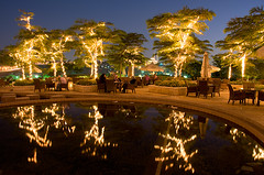 Cairo's night (ania.egypt) Tags: park travel light holiday reflection water night evening twilight dusk minaret sightseeing egypt mosque cairo leisure lightning woda egipt fontanna wieczr wiata alazharpark podr kair zmierzch zwiedzanie czaswolny meczet refleksy