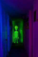 """Hallway 51"" (TxPilot) Tags: blue light red lightpainting green painting nikon paint alien roswell hallway led lap strip d200 rgb et abduction extraterrestrial microcontroller area51 lightart arduino lightpaint phonehome lightstrip therehere lightartphotography arduinomega hl1606 microcontrolled hejustwantedtousethephone takemetoyourleder programmablelightstrip rgbledaddressable digitallightwand"