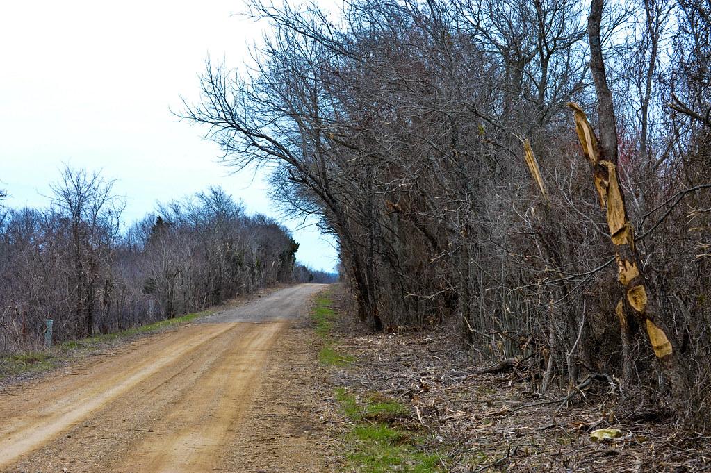 Tree shredding road crew in Ellis country Tx.