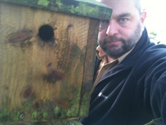 Re-hanging the nest box