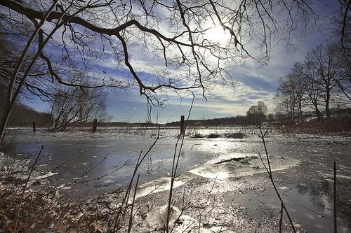 Flooded and iceed Ilmenau meadow #1
