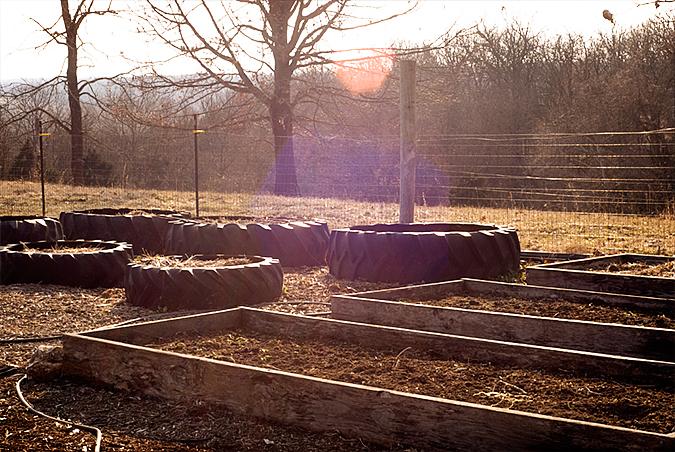 2010 gardening march 5  4