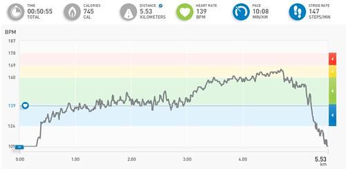adidas micoach workout
