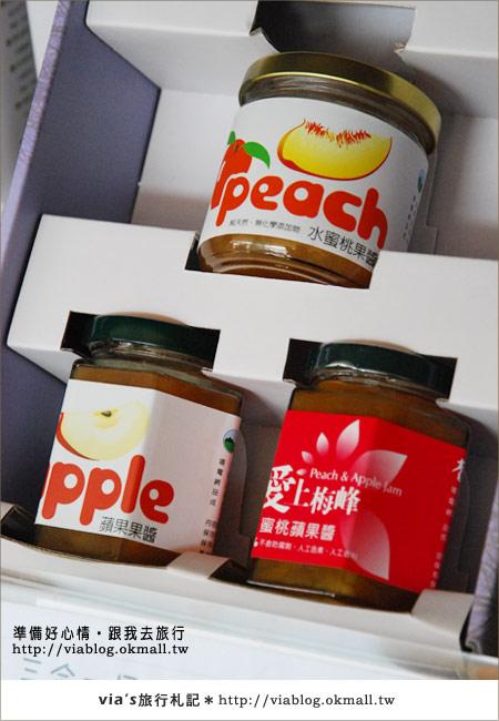 【梅峰農場】不止桃花美!梅峰農場賞花趣~(下)58