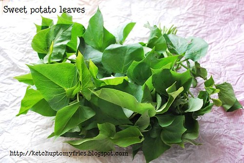 potato leaves 1