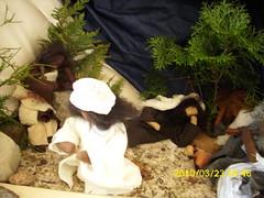 Jesus betet