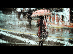 RAINY DAYS (Elena Fedeli) Tags: people italy rain photoshop buildings xprocess italia crossprocess sharp 169 pioggia autobus puglia bari palazzi apulia contrasto fromthebus cinemascope navetta higlysaturated stationstazione attraversoilfinestrino piazzaaldomoro canong10 flickrawardgallery stazionecentraledibari acrossawidow