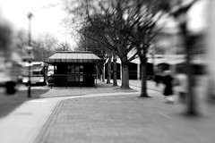 Finding Shelter (Simon in Southend) Tags: trees people bw white black blur building bus tree lines lensbaby person mono blurry focus streetlight centre creative victoria lampost civic shelter avenue lead lensbabies southend composer selective southendonsea leadin
