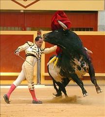 Pase torero