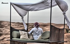 Without You (.Qanas.) Tags: tree look photography al alone looking desert you live dunes uae cant sit processing lonely abu dhabi without khaled hdr qanas liwa rashed 2011 mansoori alzaabi toppicture