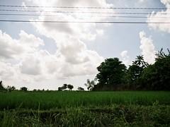 (brennan.browne) Tags: bali indonesia landscape lumix panasonic m43 mft gx1 microfourthirds