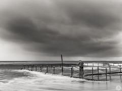 Getting Wet (John_Armytage) Tags: newport newportbeach beach pool tidalpool northernbeaches swimmer swim sony sonya7r2 sony1635 sonyaustralia nsw newsouthwales australia storm rain clouds stormclouds weather