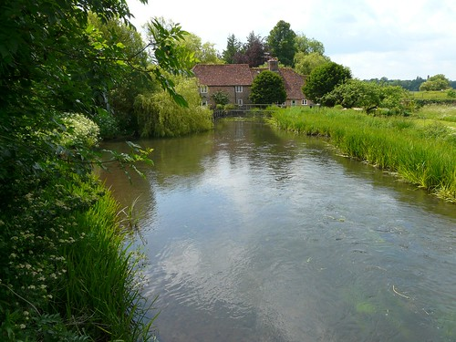 River Test, Hampshire - flckr - Mike Cattell