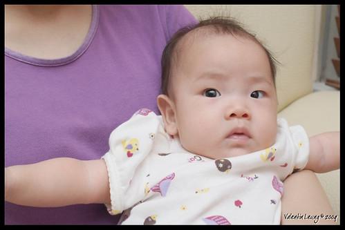 Myrtille 4 months old.
