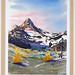 Claudia Schellenberg - Watercolours
