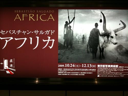 セバスチャン・サルガド AFRICA