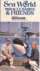 Kandu5 (Shamufan88) Tags: dolphins whales shamu rare orcas killerwhales