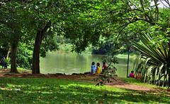 Parque do Ibir