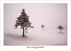 Nieve y niebla en Urkiola (Jabi Artaraz) Tags: winter españa beautiful fog landscape spain europa europe sony nieve paisaje bilbao invierno zb bizkaia niebla euskadi vizcaya bilbo spanien baskenland 1000views elurra biskaia lainoa urkiola beautifulearth negua digitalcameraclub supershot thegalaxy 100faves 1000vistas biskaya euskoflickr fineartphotos abigfave basquelandscape anawesomeshot superaplus aplusphoto flickrbest impressedbeauy diamondclassphotographer flickrdiamond excapture paisajevasco jartaraz alfa350 updatecollection blinkagain bderechosdeautorauthorscopyrightb©jabiartaraz bestofblinkwinners blinksuperstars