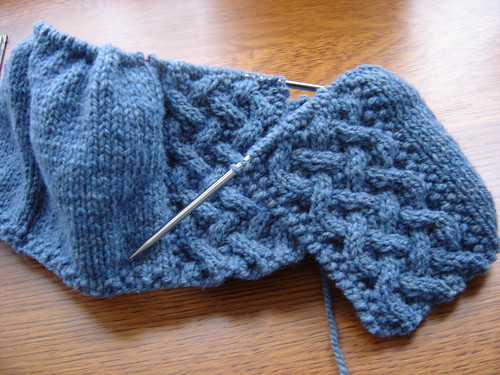 A Cardigan for Rose -- beginning