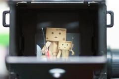 1st shot ( Act.8.2) (Ali Tse) Tags: camera toy toys amazon limited danbo tslr  revoltech jfigure danboard  gakkenflex