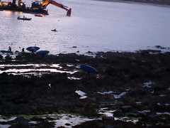 Kayak action against Shell, 4am (LAF2010) Tags: ireland garda political politics protest shell environment mayo brutality policebrutality corporations rossport shellcorporation gardaibrutality