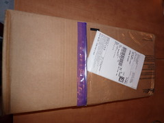 Unpacking 1: Boxed (eisfaerie) Tags: wow warcraft horde windrider