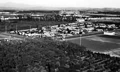 Angel's Stadium and Orange Groves 1967 (arbyreed) Tags: old vintage 1967 oc sixties angelsstadium angelstadiumofanaheim orangecountycaliforniahistory arbyreed anaheimcahistory