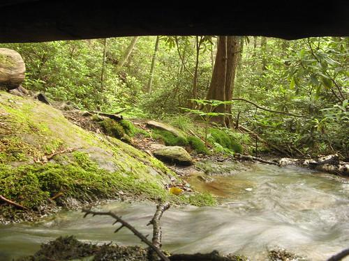 Creek near Roaring Fork
