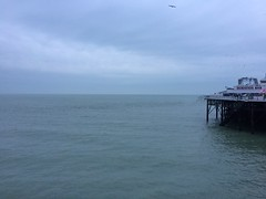 Sea (My photos live here) Tags: brighton east sussex england seaside sea side english channel water starlings birds murmuration flock pier