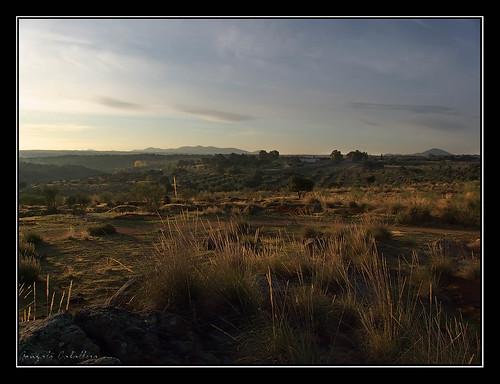 Campos de Toledo