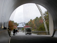 20091113
