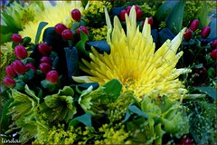 Thank you for the flowers (Lin*R) Tags: flowers yellow bouquet geel bloemen boeket