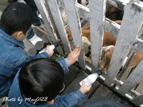 2009 12 20_37可達羊場.JPG