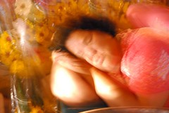Tatsu's Thailand (tatsu i) Tags: hermitcrabs thailand bangkok scuba foodporn kohsamui holidayinn phuket streetfood kohphiphi flowermarket siamsquare krabi silom skybar patpong emeraldbuddha longtailboats siamparagon gogobars greyhoundcafe nanaentertainmentplaza pingpongshows
