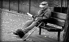 Sunday in the Park (b&w) (socalgal_64) Tags: life park street ci