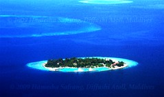 Atoll (From Afghanistan With Loveّ) Tags: world ocean travel sea sky green island blu maldives 2009 atoll zeerak safrang hamesha javaid diffushi
