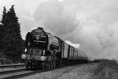 Tornado. Bedwyn. 14-02-10. (*Steve King*) Tags: london train loco valentine steam special dreams paddington salisbury british february 14th tornado railways berks 2010 mainline lner hants bedwyn 60163