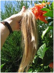 1702_ponytail