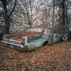 Slowly Consumed. Ford Galaxie 500, US 37, Butterfield, MO 65625 (Terrorkitten) Tags: usa colour 6x6 film square mo hasselblad missouri purdy butterfield swc c41 swcm superwide cassville fordgalaxie500 filmisnotdead hasselbladswc bebbington hasselbladswcm terrorkitten 65625 philbebbington zeissbiogon38mmf45 hsslbld