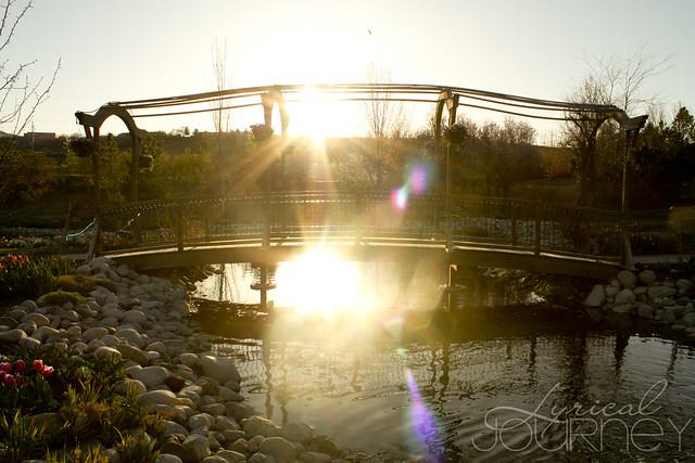 Sunflare behind bridge