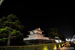 SUV_8818 (Cougar-Studio) Tags: castle nikon kyoto 京都 d3 nijo 二条城 nijocastle 世界遺產 元離宮 20110404