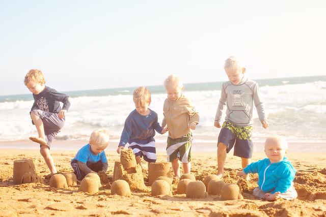 beachboys2