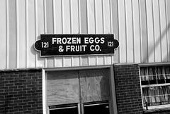 frozen eggs (teh hack) Tags: explored fornogoodreason