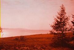F1030029_lr (chi.ilpleut) Tags: kinmen taiwan island quemoy 2017 chinesenewyear lunar film expiredfilm kodakelitechrome100 iso100 crossprocessing 135mm 35mm analogue ilovefilms kodakfilm 底片 過期底片 柯達 記憶 蹤跡 金門鎏金之島kinmen 台灣 海島 島嶼 外島 回憶 走春 大晴天拍照天 晃晃 隨拍 我不在,就在去海邊的路上 海景 outing 冬陽 暖暖 暖陽 思念 漫步