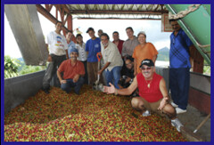 José Otero-García, USDA Rural Development State Director for Puerto Rico, coffee plantation owner Jimmy Román, and workers at the plantation