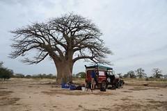 6a Into Mali, lunch spot